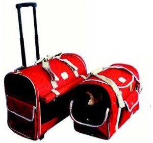 Bolso de viaje rígido con ruedas