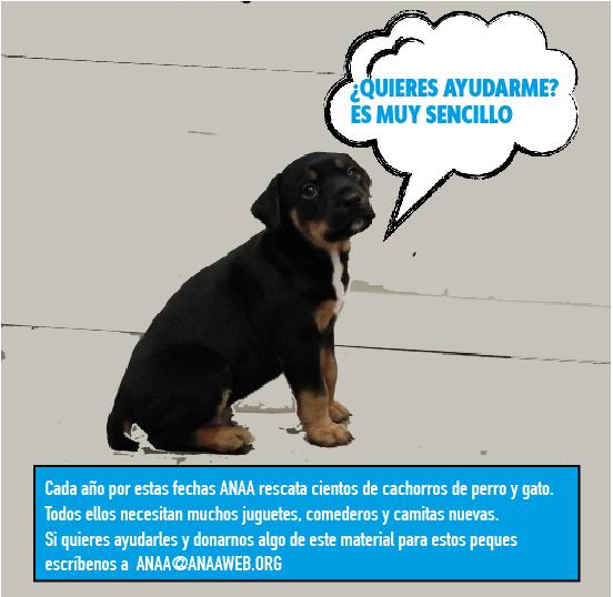 SOS Cachorros